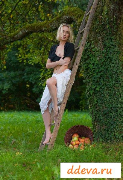 Садовница собирает плоды