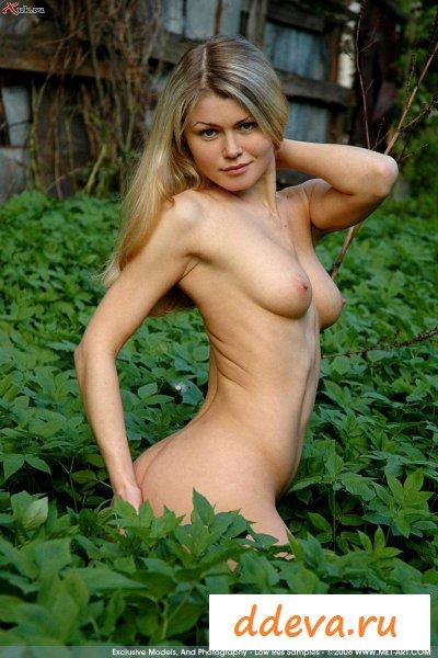 Сучка шарится в высокой траве