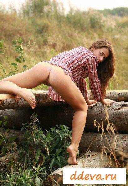 Персик возле дров
